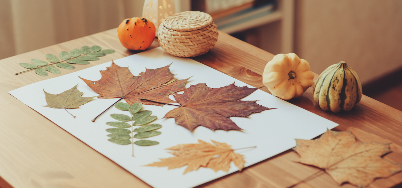 DIY Crafts With Your Kids This Fall leaves featured image